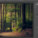 This blog is all about 9 free alternatives to photoshop